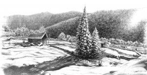 zimowy rysunek